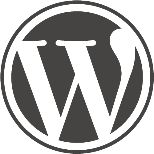 Speed Up Your WordPress Website Without Plugins