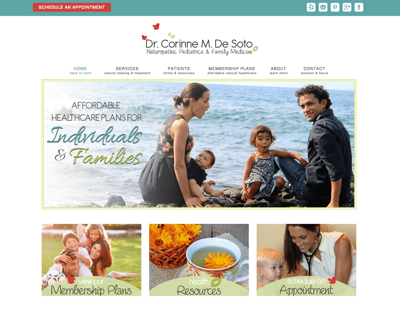 homeopathic doctor website design example