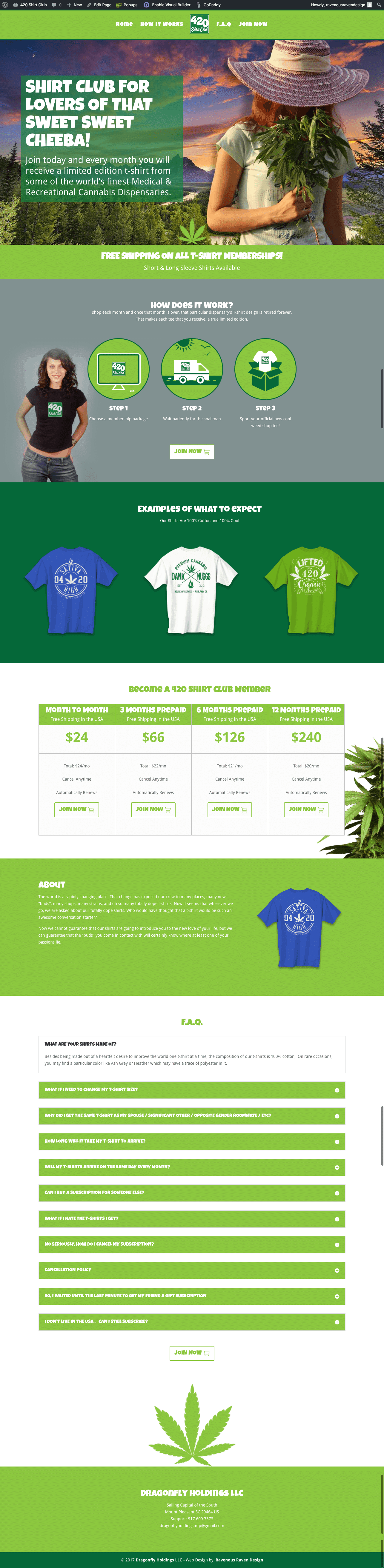 One Page Website or Sales Funnel Page 2